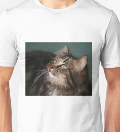 Meet Whiskers Unisex T-Shirt