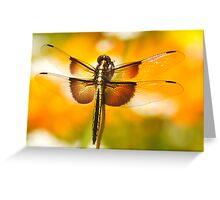 Dragonfly Marmalade Greeting Card