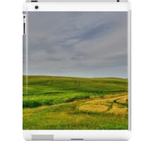 The Fields of Bruxelles iPad Case/Skin