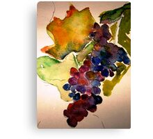 The grapes of Italy Canvas Print