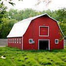 Tully's Barn by Larry Trupp