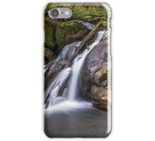 Taggerty River Lower Falls iPhone Case/Skin