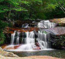 Statons Creek Falls by LeeAnne Emrick