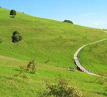 Spiritual Pathway by Michael John