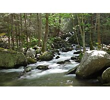 Cosby Creek Photographic Print
