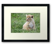 Is that my mummy over there? Framed Print