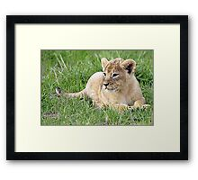 I can relax now I know where mummy is! Framed Print