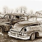 Junk Yard by Margaret Harris
