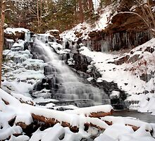 Fresh Snow at the F. L. Ricketts Waterfall by Gene Walls
