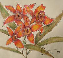 The Orange Quartet by Dan Whittemore