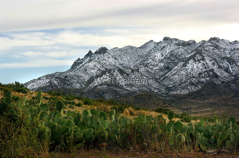Winter in the Florida Mountains ~ New Mexico USA by Vicki Pelham