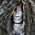 Hidden Buddha by TerraChild