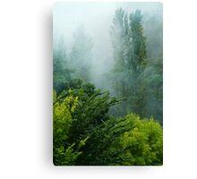 Rolling Mist Canvas Print