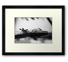 The Ghost Of My Heart. Framed Print