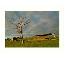 Rowsely Valley Farm Art Print