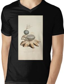 Coloured figures of English fungi or mushrooms James Sowerby 1809 0849 Mens V-Neck T-Shirt