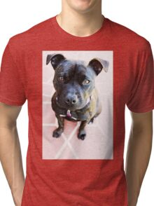 Milly Is My Name  Tri-blend T-Shirt