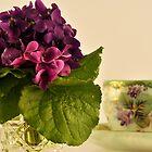 winter violet by Georgina James