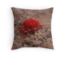 Velvet Mite Throw Pillow
