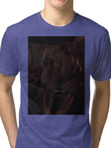 Milly's Portrait Tri-blend T-Shirt