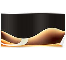 Black Curves Poster