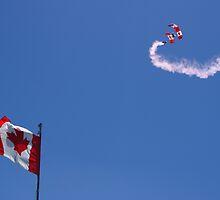 Canadian Forces Skyhawks Parachute Team by Barrie Daniels