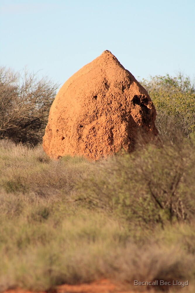 Termite mound, the road to Shark Bay, Western Australia by Becncall Bec Lloyd