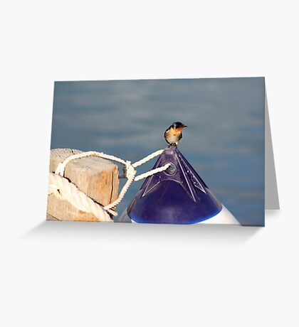 Welcome swallow 2, Monkey Mia jetty Greeting Card