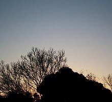 Sunset/North Beach by erinerinerin