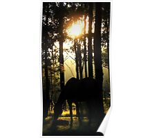 Forest Horse Poster