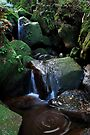 Valley of the Waters - Blue Mountains by JennyMac