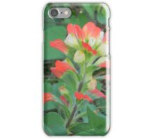 Indian Paintbrush in JULY???? iPhone Case/Skin