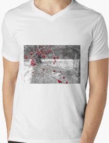 Winter Berries of Arrowtown Mens V-Neck T-Shirt