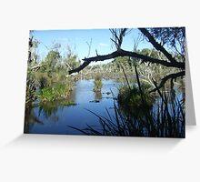 Spring-fed Marsh-lands - Rural WA Greeting Card