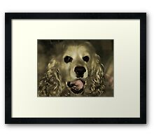 Dear Friends of Pamela-From Oliver Framed Print