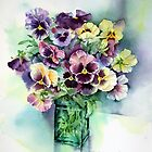 Pansies by Ann Mortimer