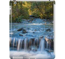 Paradise Waterfall iPad Case/Skin