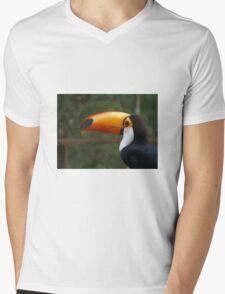 Toucan play that game, Brazil Mens V-Neck T-Shirt
