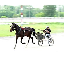 Harness Racing Photographic Print