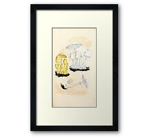 Coloured figures of English fungi or mushrooms James Sowerby 1809 0063 Framed Print