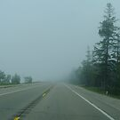 With Lake Huron on the left, driving into the Fog by BarbL
