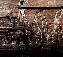 Barkoglyphs by Shane Viper