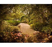 Garden Path Photographic Print