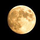 Full Moon by Larry Trupp