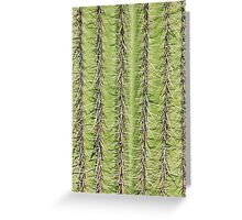 Prickly cactus pattern Greeting Card