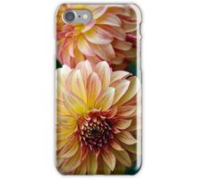 Orange and yellow colored dahlias iPhone Case/Skin