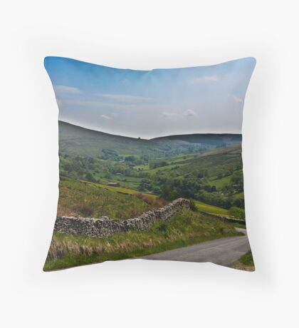 Road to Dent Station Throw Pillow