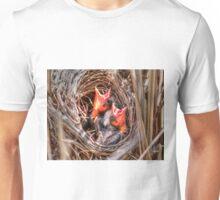 Baby Blackbirds Unisex T-Shirt
