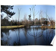 Reflections of a cold day in South GA Poster