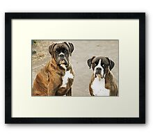 Luthien & Arwen -Boxers Dogs Series- Framed Print
